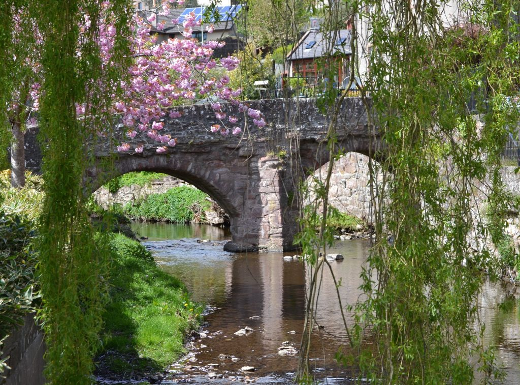 The sixteenth-century Packhorse Bridge in the centre of Alyth, framed by willow and flowering cherry trees.